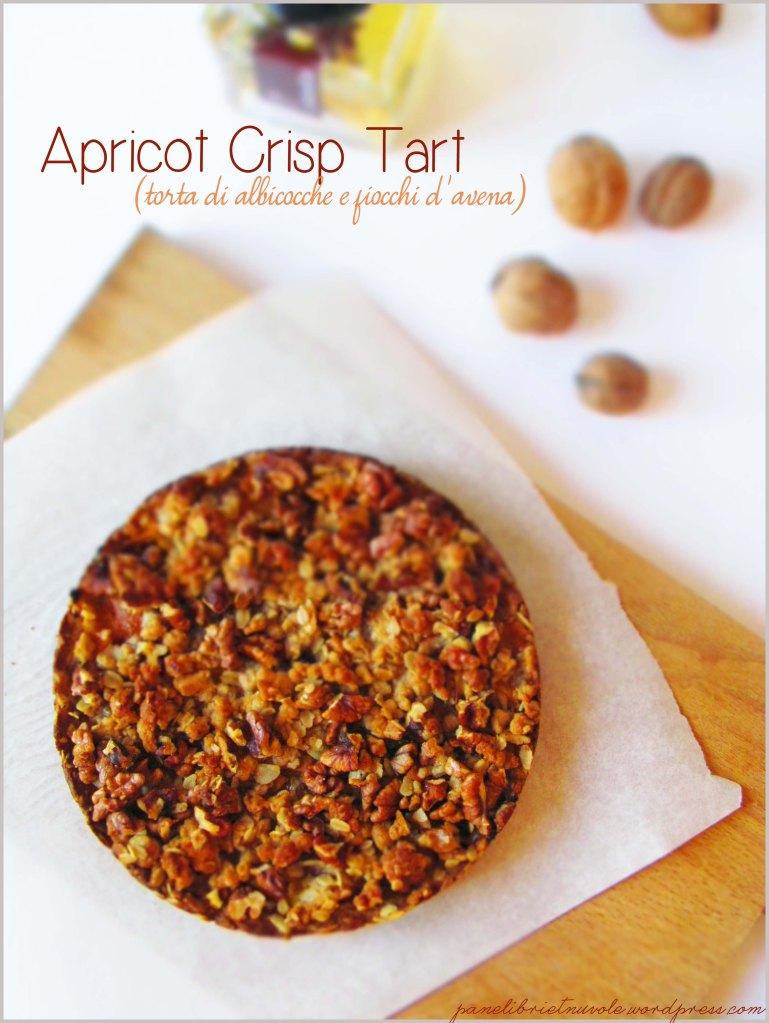 apricot-crisp-tart6
