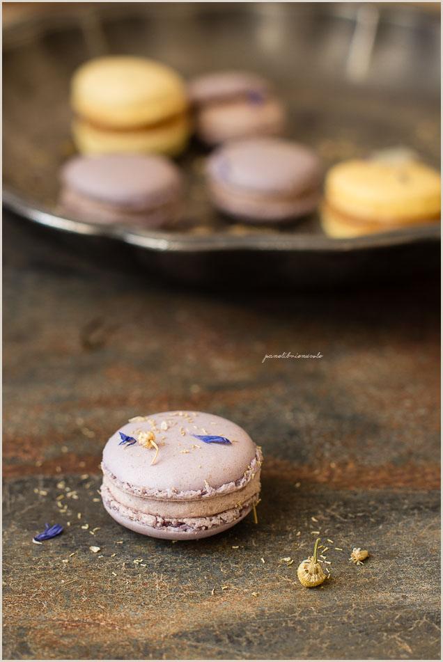 macaron-crema-mousseline-10-2