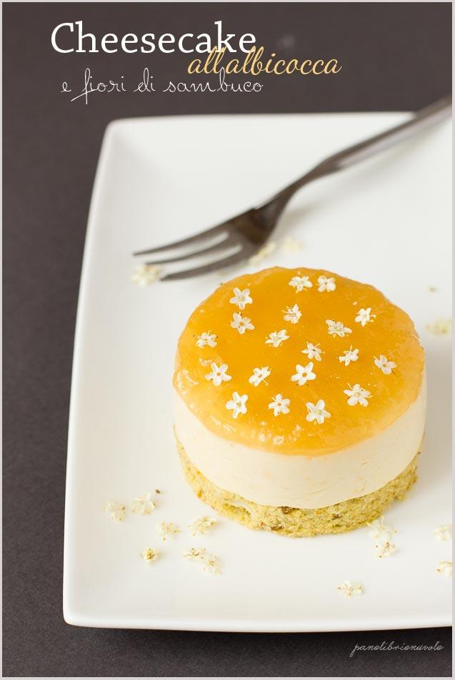 cheesecake-albicocca-pistacchio-e-fiori-di-sambuco-2